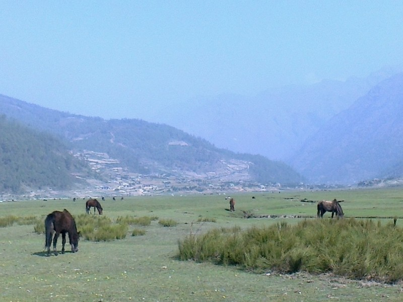 Jaljala Pass and Dhorpatan Trek (10Days)