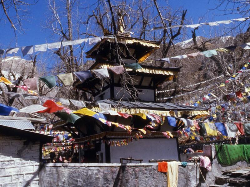 Annapurna Dream Trek          (Round Annapurna 20 days)